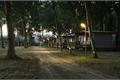 História: O acampamento de verão - Destiel