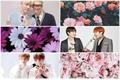 História: Save Me (Yoonseok, TaeKook,NamJin)