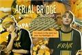 História: Aerial Bridge - One Shot - Park Jimin