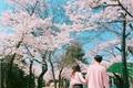 História: Instagram- imagine Baekhyun