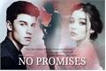 História: No Promises - Shawn Mendes