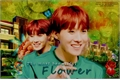 História: The most beautiful flower (J-Hope)