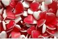 História: Quantos corações