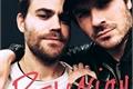 História: There Is No Love Wrong - Defan ( Damon e Stefan )