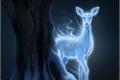História: The blue Fox