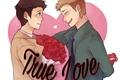 História: True Love Destiel