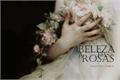 História: A beleza das rosas