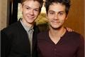 História: Newt and Thomas - love story