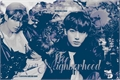 História: The Neighbourhood - Jeon Jungkook (BTS)