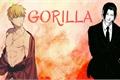 História: Gorilla