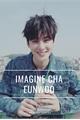 História: Imagine Cha Eunwoo - ASTRO