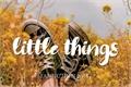 História: Little things - Mileven