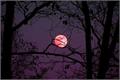 História: Bad moon rising