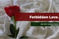 História: Forbidden Love - One Shot Chani (SF9)
