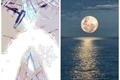 História: Moon and Sea