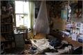 História: Num velho apartamento - O Segredo na Floresta
