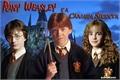 História: Rony Weasley e a Câmara Secreta