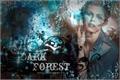 História: Dark Forest - Interativa