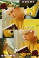 História: Meia de gatinhos. - YoonKook.