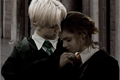 História: Wizard love - Dramione - Harry Potter