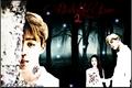 História: Diaboliks Love 2: Serendipity
