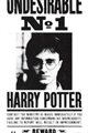 História: Harry Potter O Herdeiro de Grindelwald.