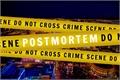 História: Postmortem - Interativa