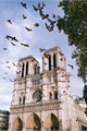 História: Uma elegia por Notre-Dame