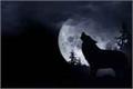 História: Lua Cheia
