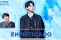 História: Enfeitiçado - Imagine Wonwoo ( SEVENTEEN )