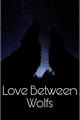História: Love Between Wolfs