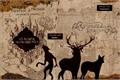 História: O Mapa do Maroto