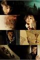 História: Rato
