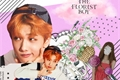 História: The Florist Boy (Jisung - NCT)