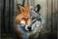 História: O lobo e a raposa