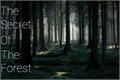 História: The Secret Of The Forest - Interativa