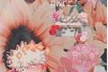 História: You Make Me Happy - Imagine Bakugou
