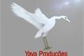 História: Jornal Yaya