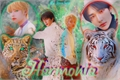 História: Harmonia