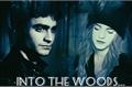 História: Into The Woods - Harmione (Harry e Hermione)