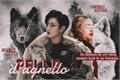História: Pelle d'Agnello - Jeon Jungkook ABO