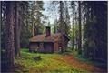 História: My Little Cottage