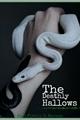 História: The Deathy Hallows - Tomarry