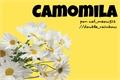História: Camomila (Romance Gay)