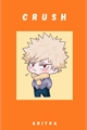 História: Crush (Bakugou Katsuki X Reader)