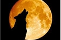 História: Full moon