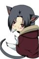 História: Itachi, o gato