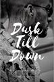 História: Dusk Till Down - Ziam Mayne -