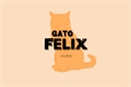 História: Gato Felix