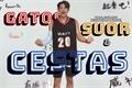 História: Gatos, Suor e Cestas - Lucas Wong NCT
